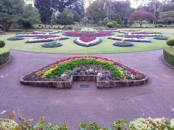 Kidway Garden